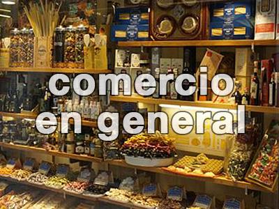 comercio en general de asturias
