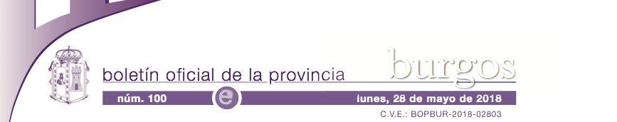 Boletin oficial provincia de Burgos. Publicacion Convenios Colectivos