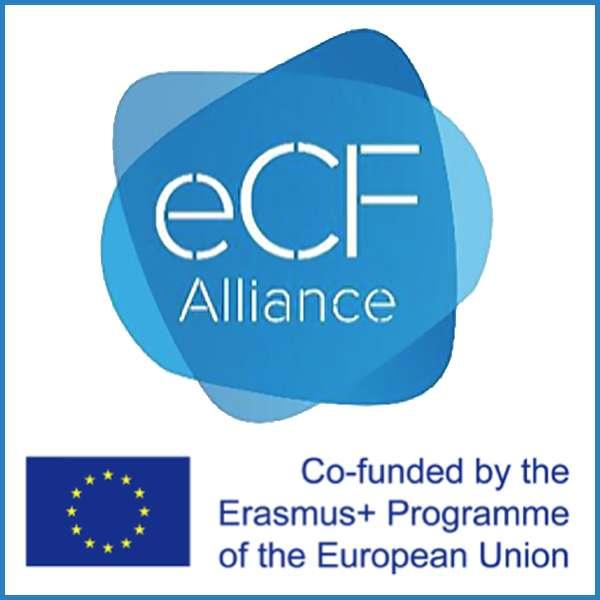 ECF COmpetencia TIC