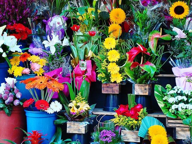 Convenio Colectivo de Flores y Plantas
