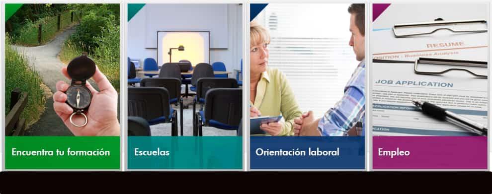 Formacion profesional y orientacion profesional