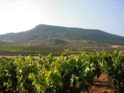 Turismo en La Rioja Informe
