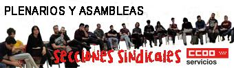 Banner web secciones sindicales CCOO Madrid