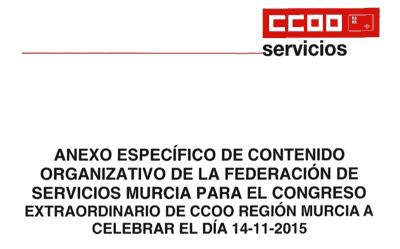 Anexo específico organizativo de la Federación de Servicios Murcia
